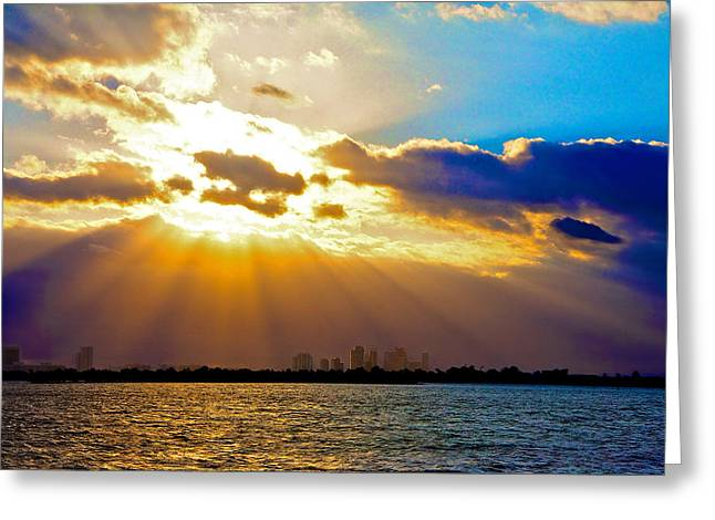 Winter Sunrise Over Miami Beach Greeting Card by William Wetmore