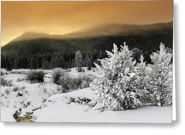 Greeting Card featuring the photograph Winter Sunrise by Ronnie and Frances Howard