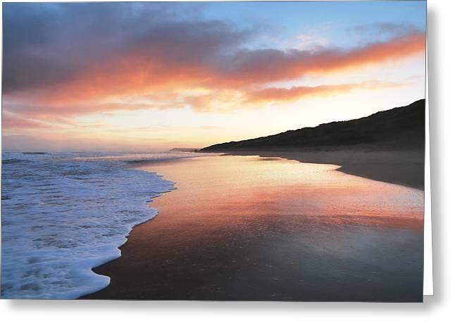 Winter Sunrise Greeting Card by Roy McPeak