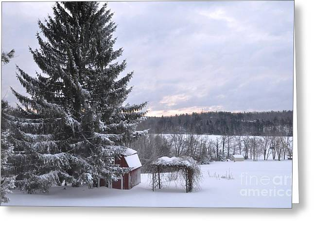 Greeting Card featuring the photograph Winter Sunset - 1 by John Black