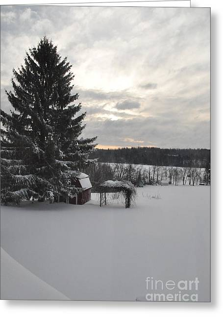 Greeting Card featuring the photograph Winter Sunset - 2 by John Black