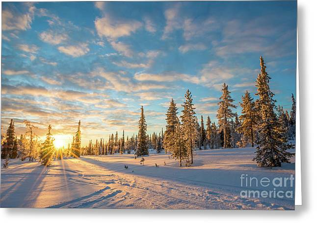 Winter Sunset Greeting Card by Delphimages Photo Creations