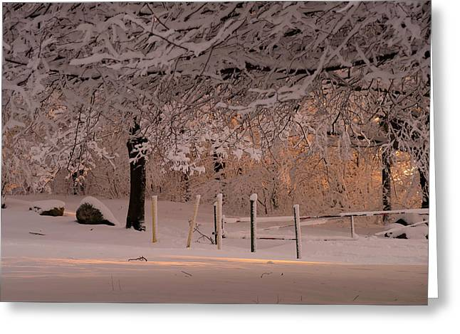Winter Sunset Ft Hill Park Greeting Card