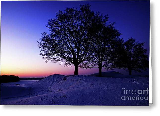 Winter Sunset Greeting Card by Hannes Cmarits