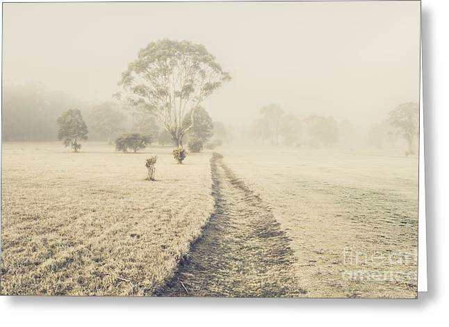 Winter Tasmania Background Greeting Card by Jorgo Photography - Wall Art Gallery
