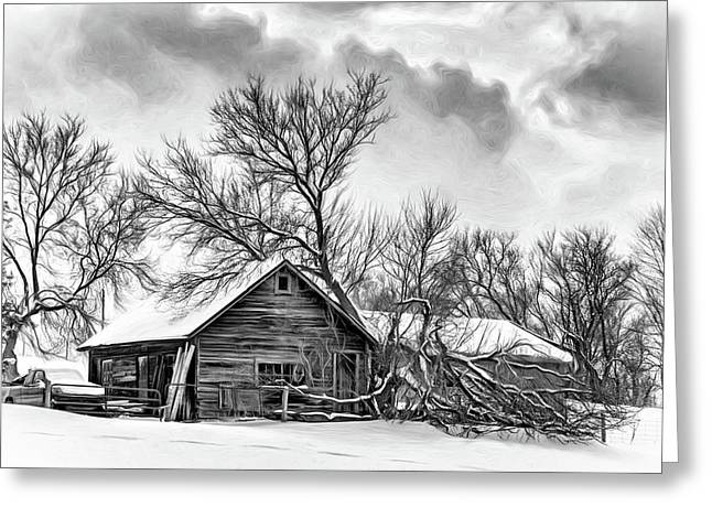 Winter Thoughts 2 - Bw Greeting Card by Steve Harrington