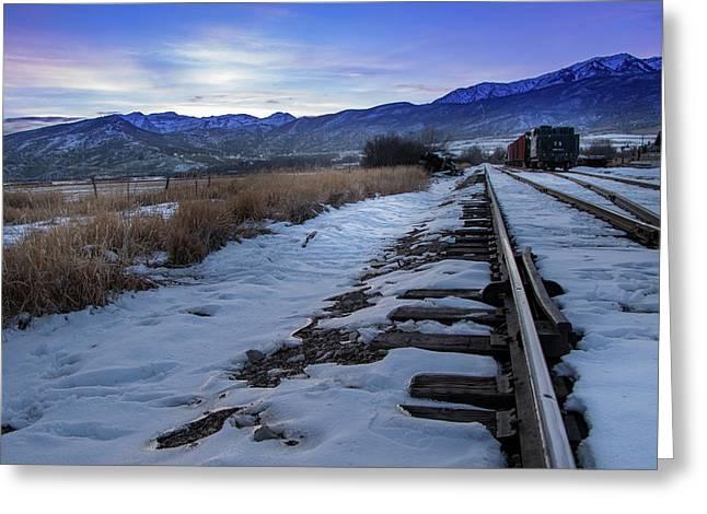 Winter Tracks Greeting Card