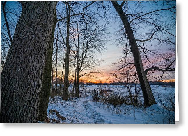 Winter Trails Greeting Card