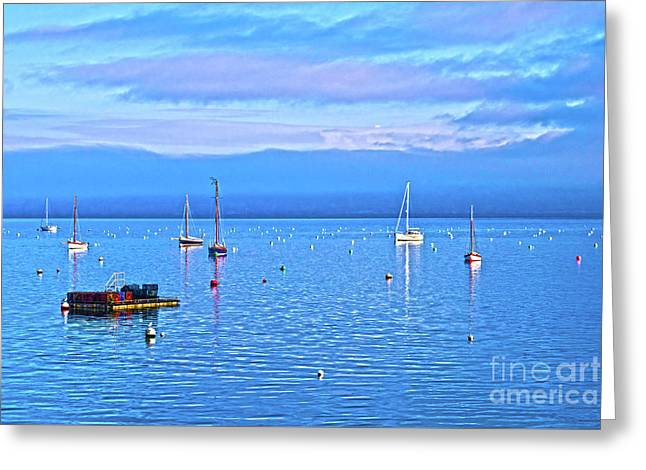 Winter Tranquility Hdr In Carrick Roads Greeting Card by Terri Waters