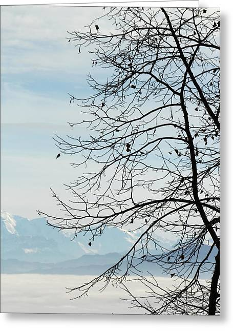 Winter Tree And Alps Mountains Upon The Fog Greeting Card