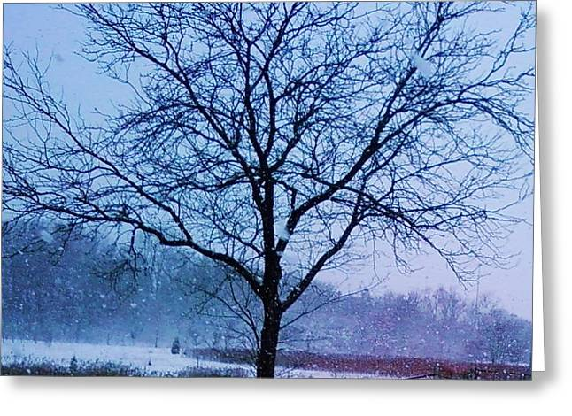 Winter Tree II Greeting Card