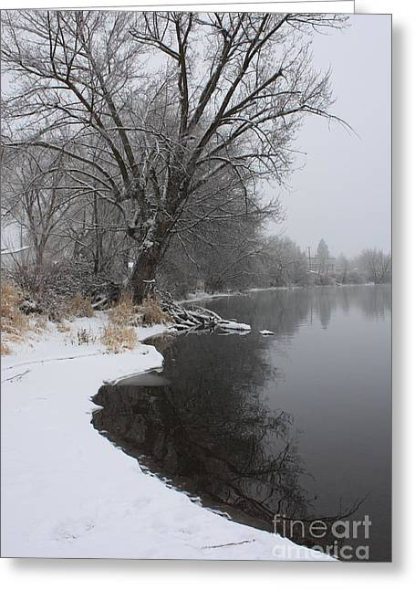 Winter Tree Reflecting On Snowy Yakima River Greeting Card by Carol Groenen