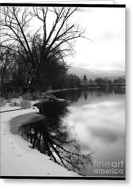 Winter Tree Reflection With Framing Greeting Card by Carol Groenen