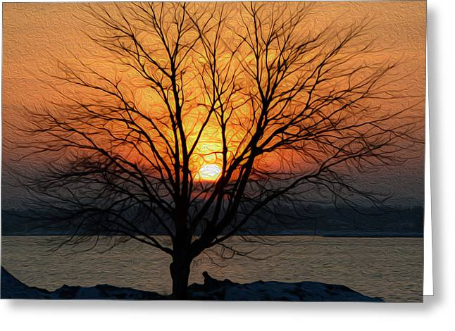 Greeting Card featuring the photograph Winter Tree Sunrise by SimplyCMB