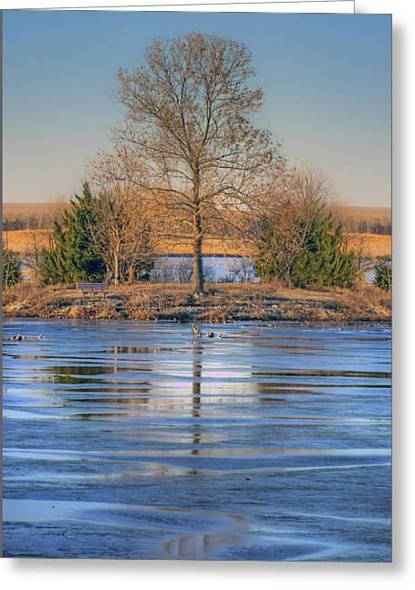 Winter Tree - Walnut Creek Lake Greeting Card