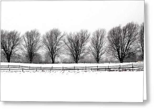 Greeting Card featuring the photograph Winter Treeline by Don Nieman