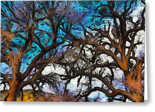 Greeting Card featuring the photograph Winter Trees At Fort Tejon Lebec California Abstract by Floyd Snyder