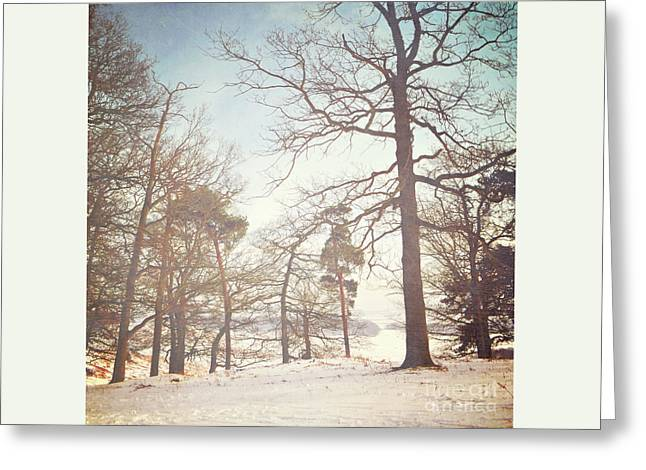 Greeting Card featuring the photograph Winter Trees by Lyn Randle