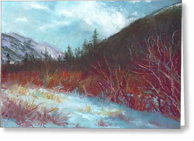 Winter View In Rocky Mountain National Park Greeting Card by Grace Goodson