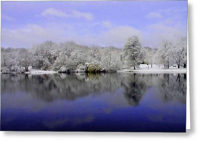 Winter View Greeting Card by Karol Livote
