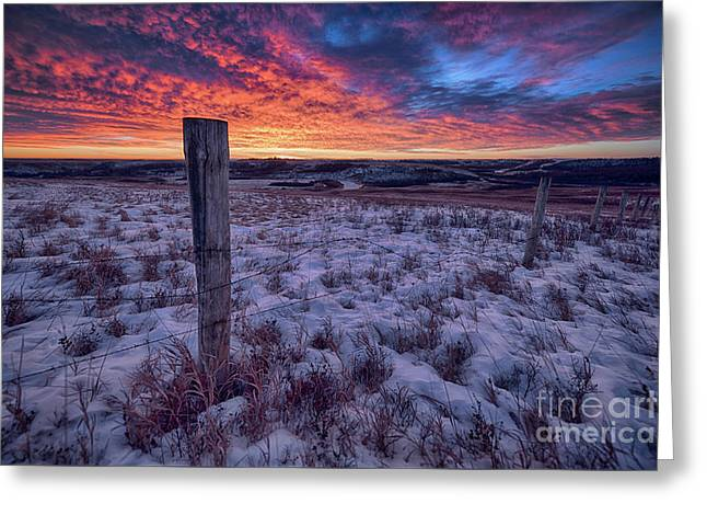 Winter Views Greeting Card by Ian McGregor