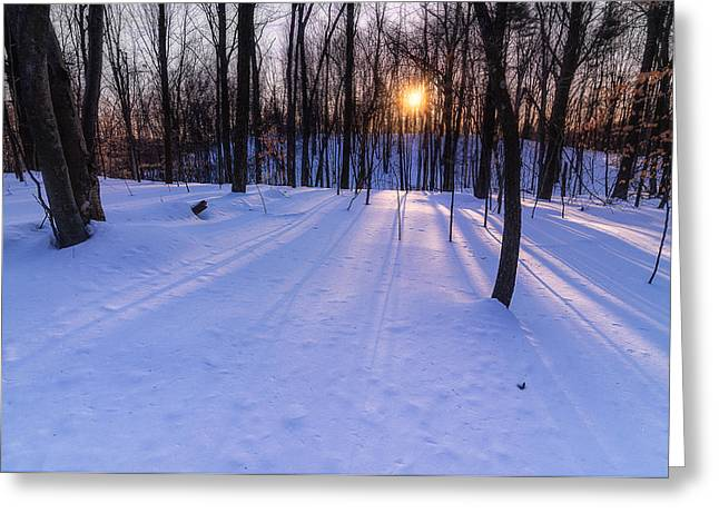 Winter Walks Continue Greeting Card