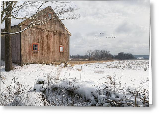 Winter Warmth Greeting Card by Bill Wakeley