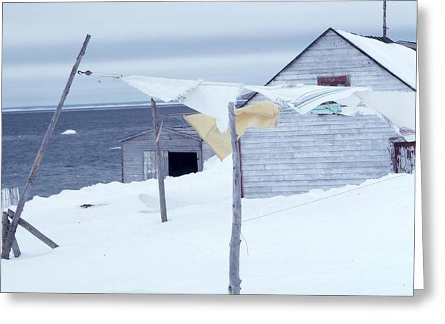 Greeting Card featuring the photograph Winter Washday by Douglas Pike