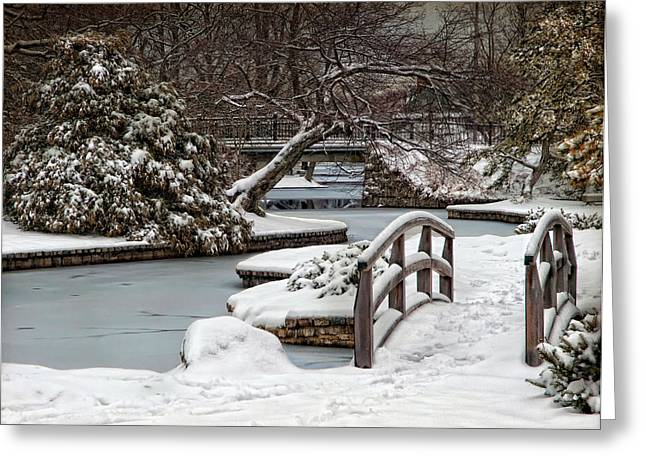 Winter Welcome Greeting Card by Robin-lee Vieira