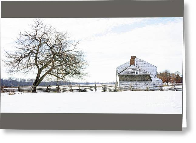 Winter White Out Greeting Card