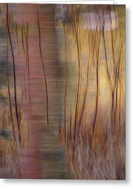 Greeting Card featuring the photograph Winter Willows Abstract by Deborah Hughes