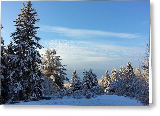Winter Wonder  Greeting Card by Natalie Barrow