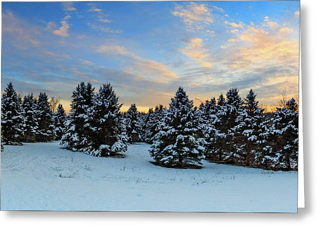 Greeting Card featuring the photograph Winter Wonderland  by Emmanuel Panagiotakis