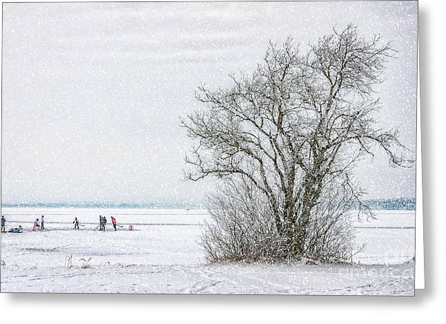 Winter Wonderland Frozen Lake Greeting Card
