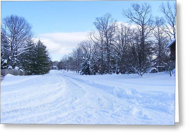 Winter Wonderland Greeting Card by James and Vickie Rankin