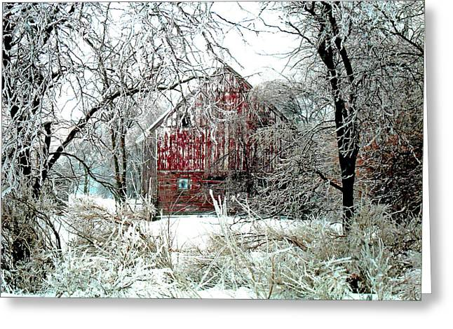 Winter Wonderland Greeting Card by Julie Hamilton