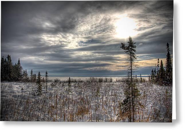 Winter Wonderland Greeting Card by Michel Filion