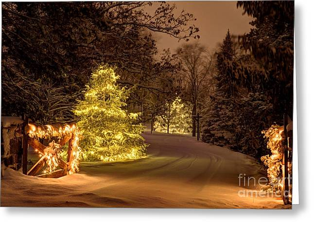 Winter Wonderland Minnesota Greeting Card by Wayne Moran