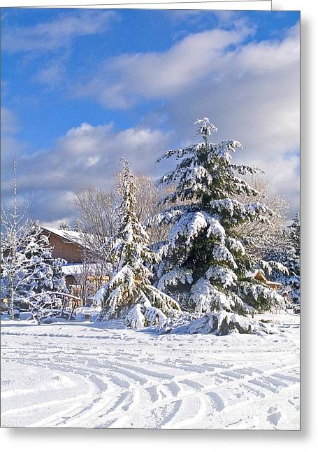 Winter Wonderland Greeting Card by Wilbur Young
