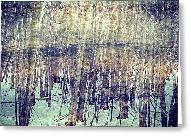 Winter Woods Aglow Greeting Card