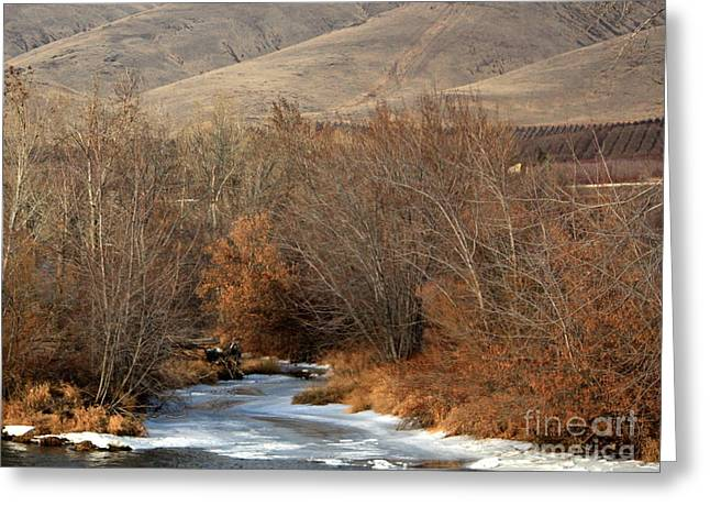 Winter Yakima River With Hills And Orchard Greeting Card by Carol Groenen