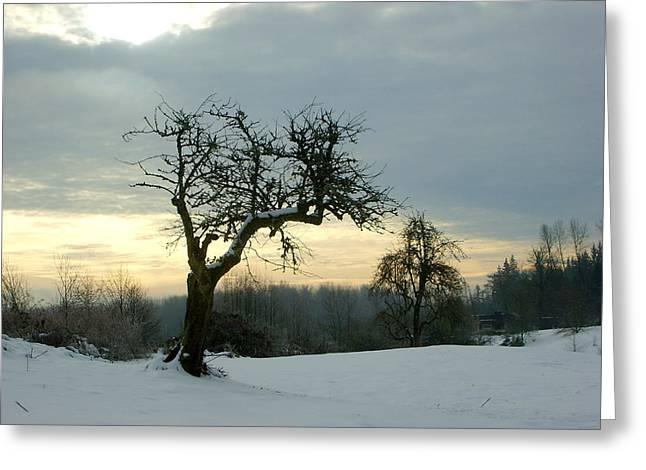 Wintergloom Greeting Card