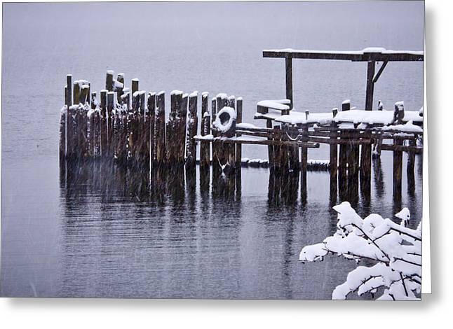 Winterized Greeting Card