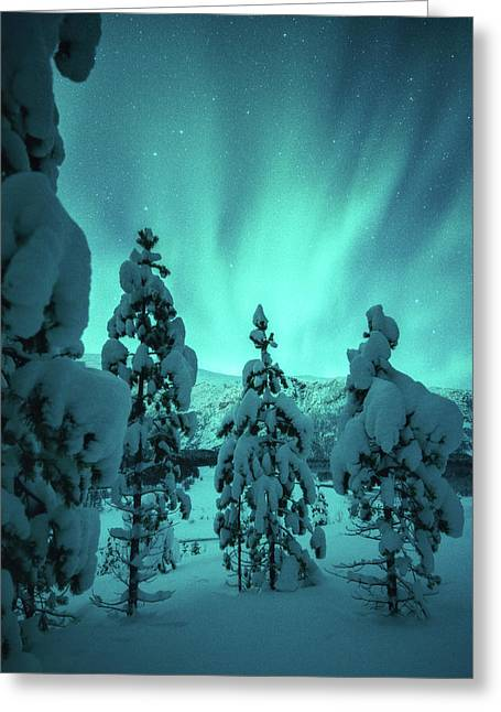 Winterland Greeting Card by Tor-Ivar Naess