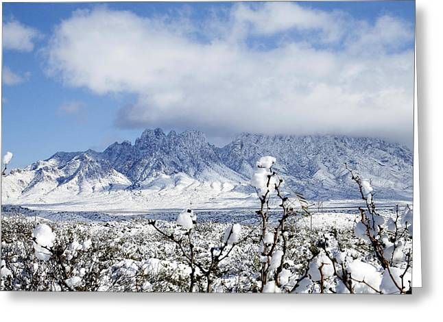 Organ Mountains Winter Wonderland Greeting Card by Kurt Van Wagner