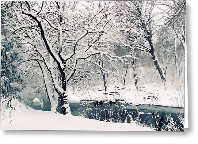 Winter's Charm Greeting Card