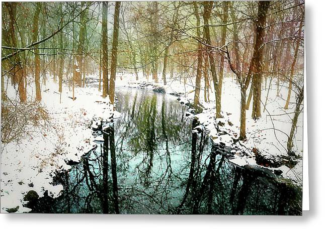 Winter's Chill Greeting Card by Diana Angstadt