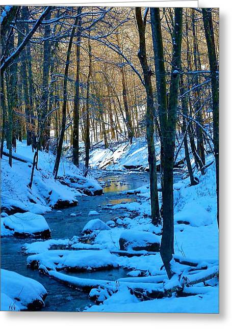 Winter's Cold Touch Greeting Card