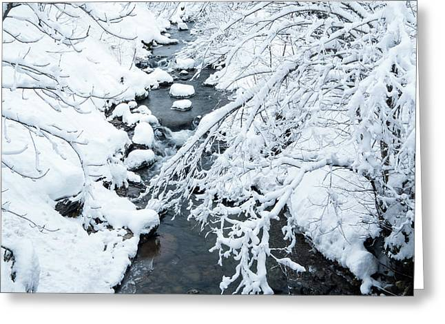 Greeting Card featuring the photograph Winters Creek- by JD Mims