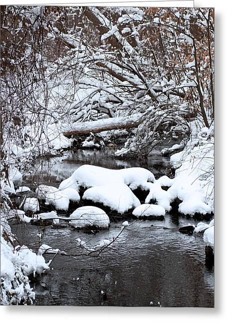 Winters Crossing Greeting Card by Scott Wyatt